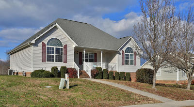 Soddy Daisy Single Family Home For Sale: 10305 Sovereign Pointe Dr