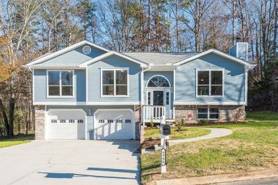 Ooltewah Single Family Home For Sale: 6906 Spinmaker