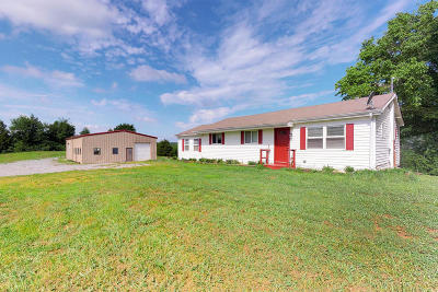 Riceville Single Family Home For Sale: 4150 Highway 11s