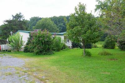 Spring City Single Family Home For Sale: 2620 Wolf Creek Rd