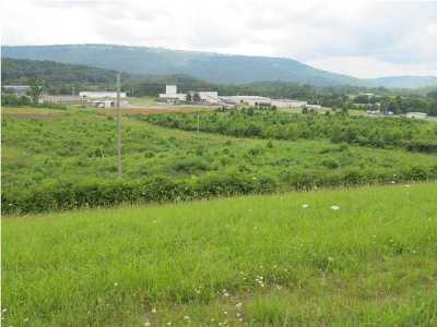 Marion Residential Lots & Land For Sale: 1 Godsey Dr
