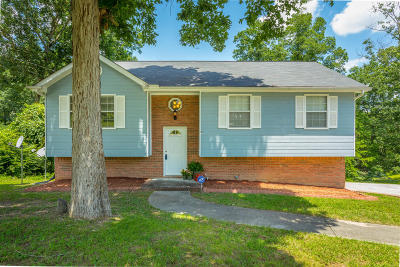 Ringgold Single Family Home Contingent: 103 Squirrel Cir