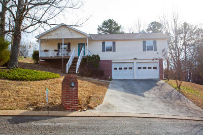 Ringgold Single Family Home For Sale: 45 W Sims Dr