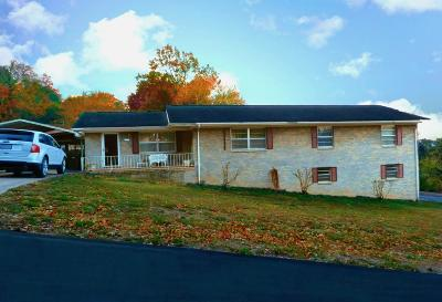 Ringgold Single Family Home For Sale: 98 Marilyn Cir
