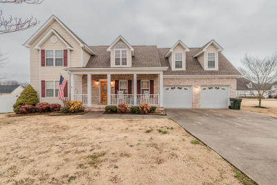 Ringgold Single Family Home For Sale: 95 Rocky River Rd