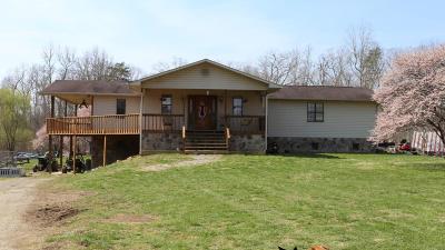 Spring City Single Family Home For Sale: 425 Pittman Ln