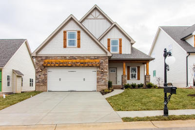 Chattanooga Single Family Home For Sale: 4252 Inlet Loop #Lot #27