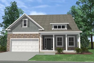 Hixson Single Family Home For Sale: 1149 Little Sorrel Ln #549