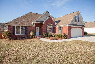 Soddy Daisy Single Family Home For Sale: 12217 Plow Ln