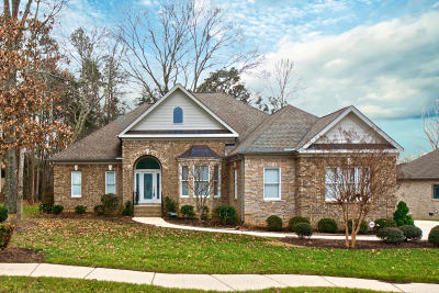 Apison Single Family Home For Sale: 3066 Skipping Stone Dr