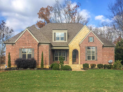 Ooltewah Single Family Home For Sale: 8327 Georgetown Bay Dr