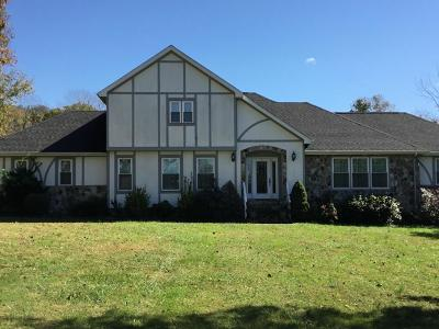 Ringgold Single Family Home For Sale: 294 Pleasant View Dr