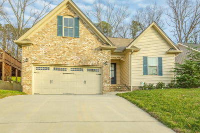 Chattanooga Single Family Home For Sale: 7258 Noah Reid Road