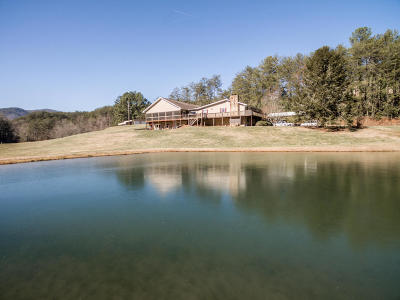 Turtletown Single Family Home For Sale: 217 Hyatt Bigham Rd