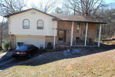 Hixson Single Family Home For Sale: 306 Stonewood Dr