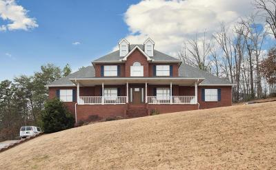 Ringgold Single Family Home For Sale: 362 Hidden Trace Dr