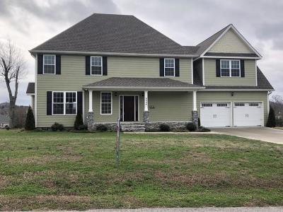 Ooltewah Single Family Home For Sale: 8024 Wolftever Dr