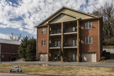 Dayton Condo For Sale: 231 Chickamauga Dr #301