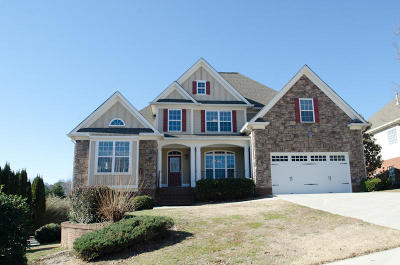 Ooltewah Single Family Home For Sale: 3095 Roundabout Ln