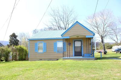 Spring City Single Family Home For Sale: 466 Cemetery Rd #5