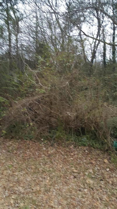 Residential Lots & Land For Sale: 2327 Lyons Ln #Lot #19