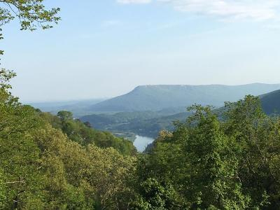 Signal Mountain Single Family Home For Sale: 508 S Brady Point Rd