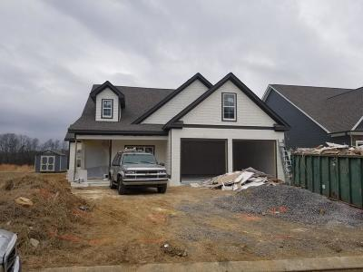 Ooltewah Single Family Home For Sale: 7425 Keely Run