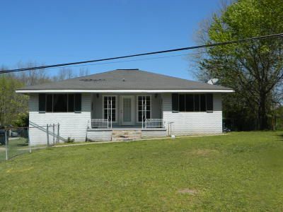 Rising Fawn Single Family Home For Sale: 437 Gray Rd