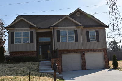 Ooltewah Single Family Home For Sale: 7681 Passport Dr #991