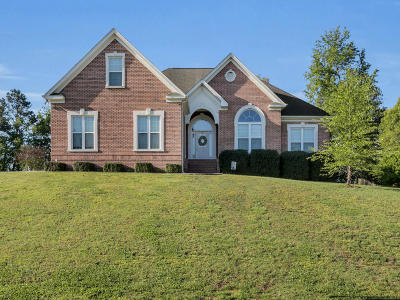 Ringgold Single Family Home For Sale: 950 Jays Way