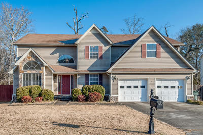 Hixson Single Family Home For Sale: 1225 Chase Meadows Cir