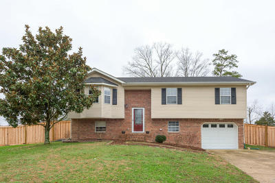Ringgold Single Family Home Contingent: 46 Lerae Rd