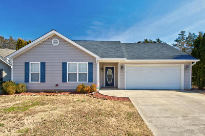 Chattanooga Single Family Home For Sale: 7146 Tyner Crossing Dr