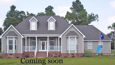 Harrison Single Family Home Contingent: 7235 Tanya Dr