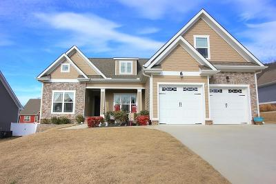 Ooltewah Single Family Home For Sale: 8061 Turkey Run Rd
