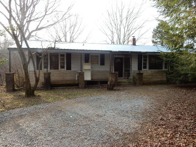 Rising Fawn Single Family Home For Sale: 8674 Highway 157