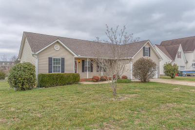 Ringgold Single Family Home Contingent: 47 Crosswinds Dr