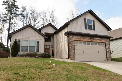 Chattanooga Single Family Home For Sale: 8547 Maple Valley Dr #56
