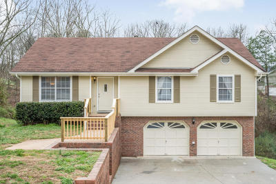 Ringgold Single Family Home For Sale: 195 Shady Brook Ln