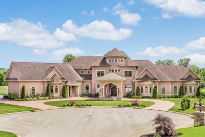 Ringgold Single Family Home For Sale: 125 Firecreek Dr