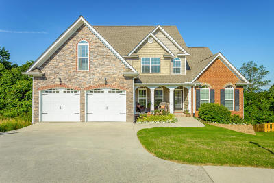 Ringgold Single Family Home For Sale: 335 Kailors Cove Cir