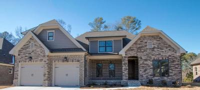 Apison Single Family Home For Sale: 3748 Lacy Leaf Ln #Lot 184
