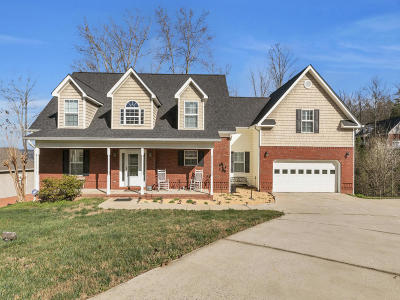 Ringgold Single Family Home For Sale: 165 Jalopy Ridge Dr