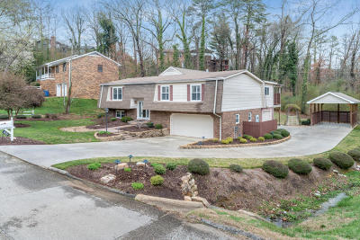 Hixson Single Family Home Contingent: 531 Forrester White Dr