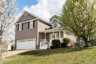 Ringgold Single Family Home Contingent: 246 Haven Dr