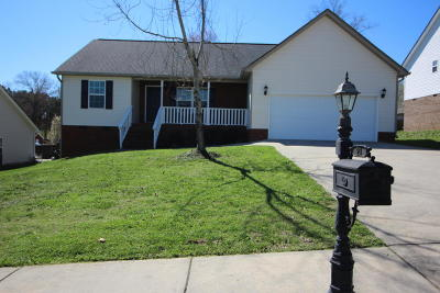 Ringgold Single Family Home Contingent: 27 Willowbrook Dr