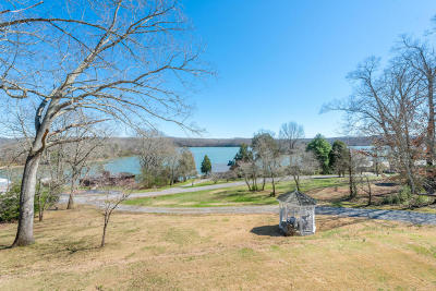 Spring City Single Family Home For Sale: 1110 Scenic Lakeview Dr