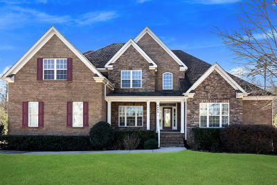 Ooltewah Single Family Home For Sale: 4045 Platinum Way