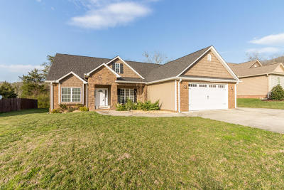 Ooltewah Single Family Home For Sale: 8781 Sunridge Dr