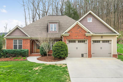 Chattanooga Single Family Home Contingent: 784 Shearer Cove Rd